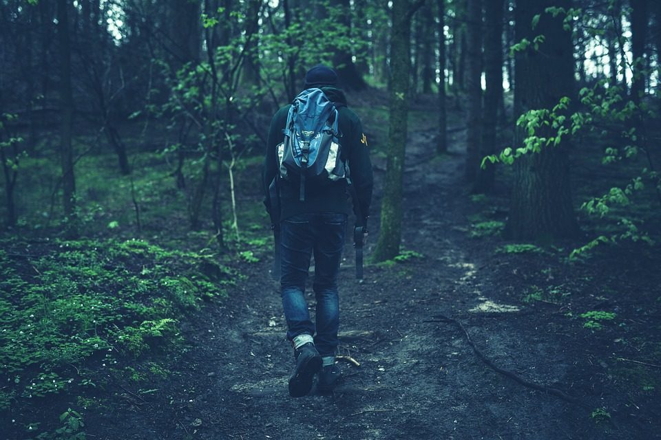 An image of a man hiking through the woods.